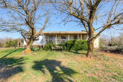 8749 Palermo Honcut, Oroville, CA 95966 - #: OR20047420