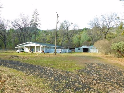 29710 State Highway 36 E, Paynes Creek, CA 96080 - #: SN19007009