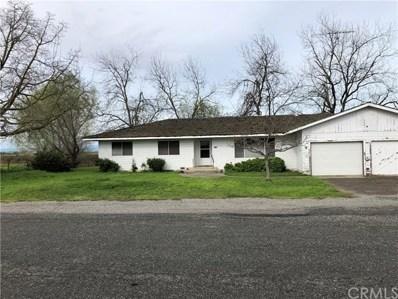 1079 County Road WW, Butte City, CA 95920 - #: SN19072710