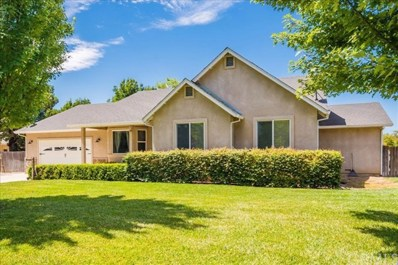 363 Norman Road, Princeton, CA 95970 - #: SN19188254