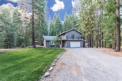 462 Forest, Clear Creek, CA 96137 - #: SN19221416
