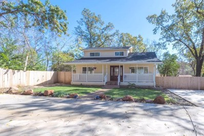 5178 Foster Road, Paradise, CA 95969 - #: SN19248682