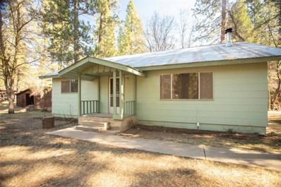 229 Pecks Valley Rd, Greenville, CA 95947 - #: SN20064483