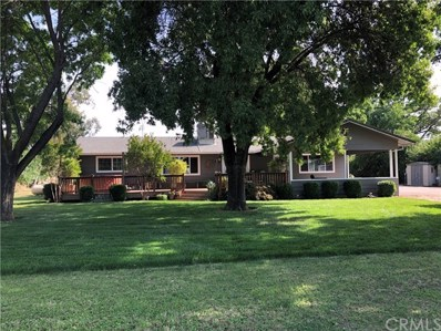 5400 Nord Highway, Chico, CA 95973 - #: SN20087400