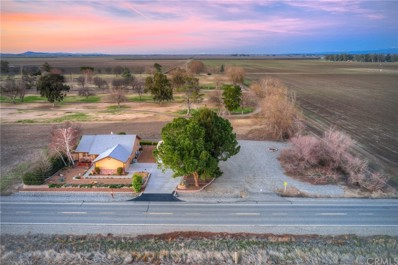 6294 County Road 39, Willows, CA 95988 - #: SN21024484