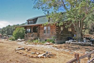 19450 Pine Canyon Road, Lake Hughes, CA 93532 - #: SR18063539