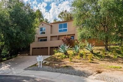 11 Bridle Lane, Bell Canyon, CA 91307 - #: SR19189523