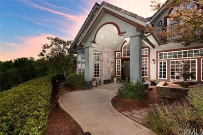 19 Rolling Wood Lane, Fallbrook, CA 92028 - #: SW18213042