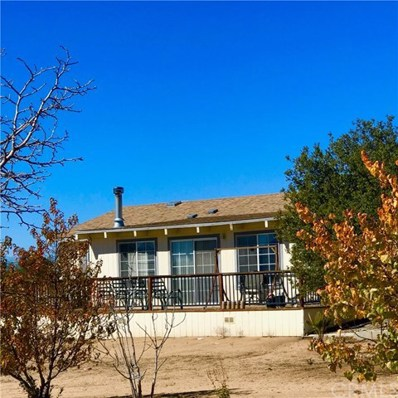 41685 Mount Road, Anza, CA 92539 - #: SW18251529