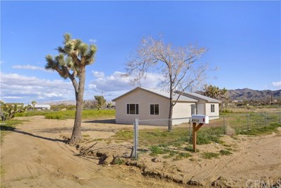 6313 Ruth Drive, Yucca Valley, CA 92284 - #: SW19069658