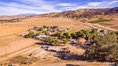 21850 Taint Place, Nuevo\/Lakeview, CA 92567 - #: SW19075358