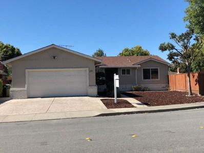 213 Alton Street, Milpitas, CA 95035 - #: ML81728524