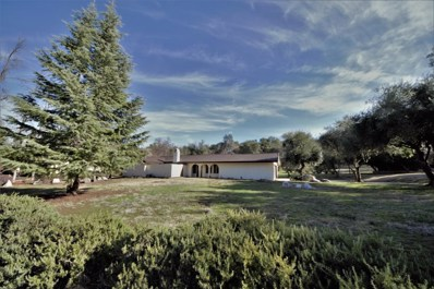 23185 Gold Springs Dr, Columbia, CA 95310 - #: ML81759724