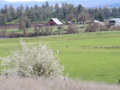 Pitville Road, McArthur, CA 96056 - #: 17-2011