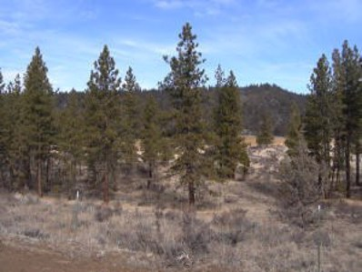 County Rd. 85, Lookout, CA 96054 - #: 18-1901