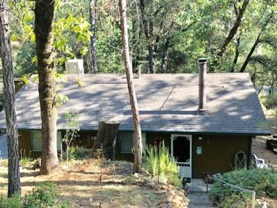 19563 Statton Road, Lakehead, CA 96051 - #: 18-5395