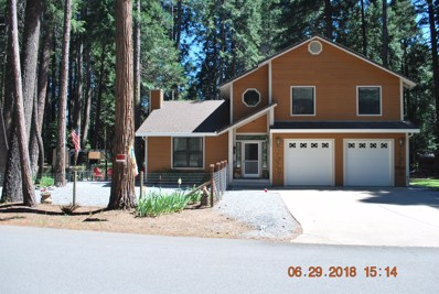 9440 Mountain Meadow Rd, Shingletown, CA 96088 - #: 19-305