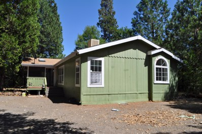 29573 Fenders Ferry Rd, Round Mountain, CA 96084 - #: 19-4307