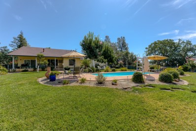 22577 White Cloud Ln, Palo Cedro, CA 96073 - #: 19-4916