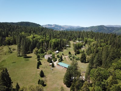 30521 Reedy Camp Rd, Big Bend, CA 96011 - #: 19-5182