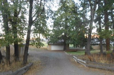 17715 State Highway 89, Hat Creek, CA 96040 - #: 19-6011