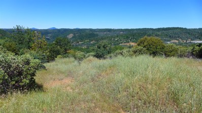 13.3 +- Ac Red Hawk Place, Round Mountain, CA 96084 - #: 20-2962