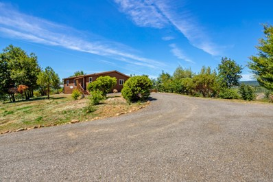 30250 Dunn Moody Rd, Round Mountain, CA 96084 - #: 20-3016