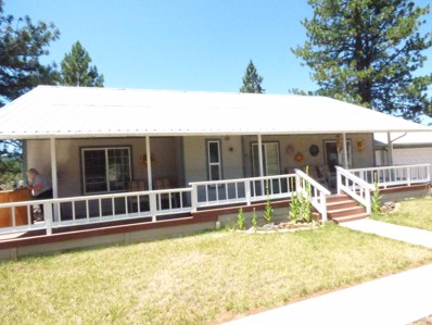 5465 Co. Rd.93, Lookout, CA 96054 - #: 20-3437