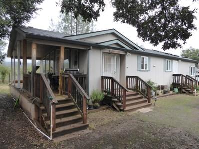 4806 Wilson Hill Rd, Manton, CA 96059 - #: 20-355
