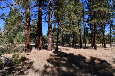 4 Acres Lee Rd, McArthur, CA 96056 - #: 20-4156
