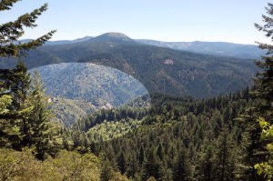 #11 Forest Service Rd., Big Bend, CA 96011 - #: 20-4215