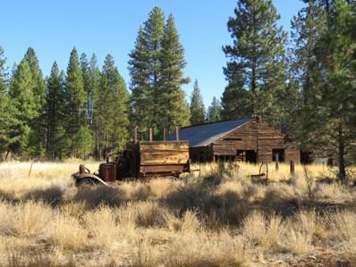 Lot 29 Cedar Road, Lookout, CA 96054 - #: 20-5057