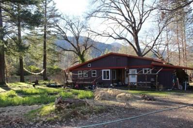 3900 Lower South Fork, Hyampom, CA 96046 - #: 20-5455
