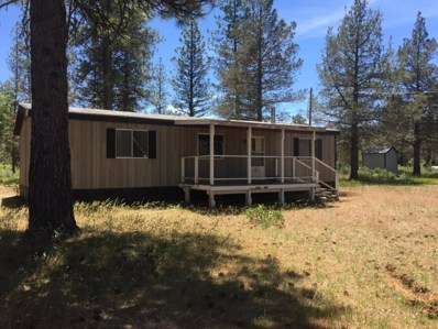 343 Pine St, Lookout, CA 96056 - #: 20-560