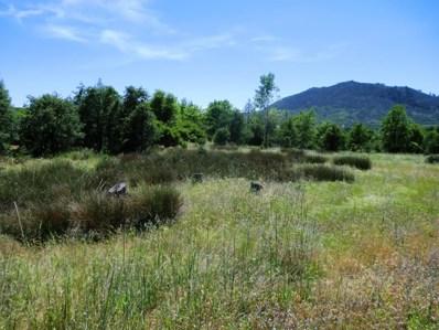18309 Patterson Ranch Rd, Montgomery Creek, CA 96065 - #: 20-889