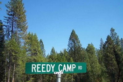 30481 Reedy Camp Rd, Big Bend, CA 96011 - #: 21-1846