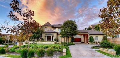 20 Fox Hole Road, Ladera Ranch, CA 92694 - #: 300790684