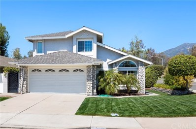32101 Pleasant Glen Road, Trabuco Canyon, CA 92679 - #: 301116746