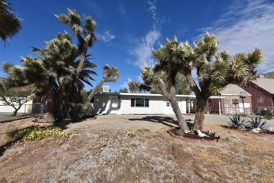 7078 Mohawk Trail, Yucca Valley, CA 92284 - #: 301118939