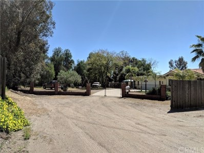 21939 Camille Drive, Nuevo\/Lakeview, CA 92567 - #: 301120123