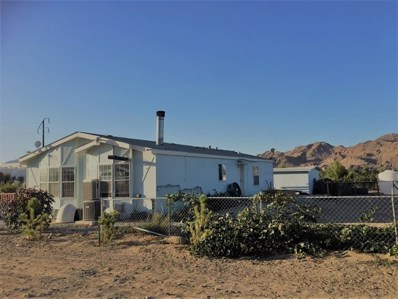 10183 Buena Vista Road, Lucerne Valley, CA 92356 - #: 301244611