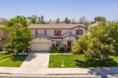 31743 Pepper Tree Street, Winchester, CA 92595 - #: 301521784