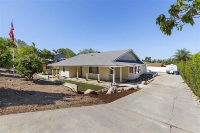 1142 Rancho Ryan Rd, Fallbrook, CA 92028 - #: 180051851