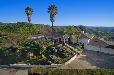 40134 Sandia Creek Dr, Fallbrook, CA 92028 - #: 190005097
