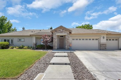 1101 Tess, Arbuckle, CA 95912 - #: 202001765
