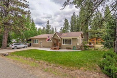200 Mountain View Road, Calpine, CA 96124 - #: 20201178