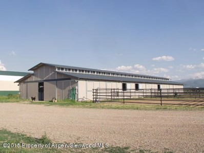 1030 County Road 102, Carbondale, CO 81623 - #: 141271