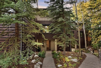 851 Ute Avenue UNIT C, Aspen, CO 81611 - #: 156697