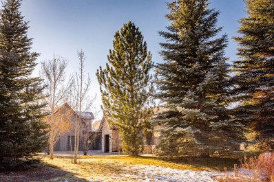 200 W Diamond A Ranch Road, Carbondale, CO 81623 - #: 156702