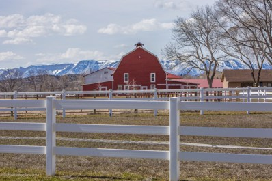 345 County Road 262, New Castle, CO 81647 - #: 160622